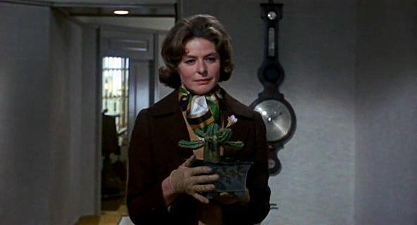 Фото из фильма цветок кактуса