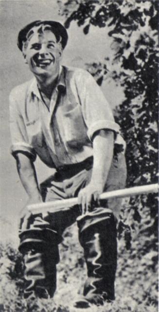 Тайга золотая (1937)