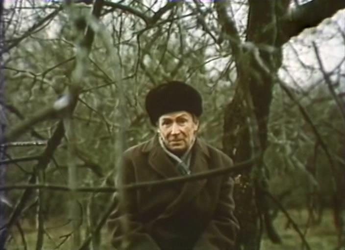 Константин Сенкевич