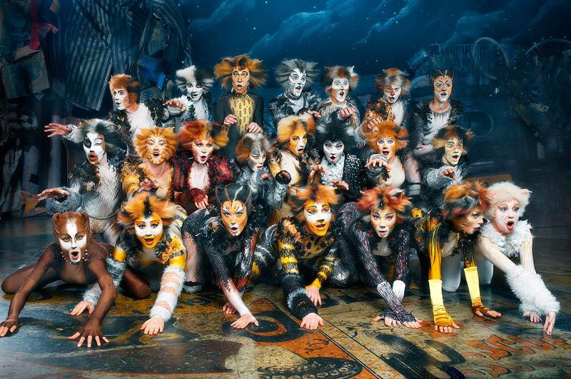 Кошки из мюзикла кошки картинки